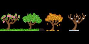 Illustration von vier Bäumen, die die vier Jahreszeiten darstellen