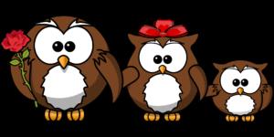 Illustration von drei Eulen: Mutter, Vater und Kind