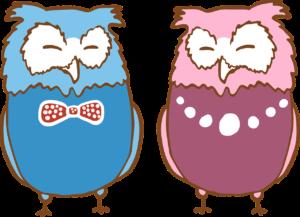 Illustration von zwei Eulen in Blau und Rosa